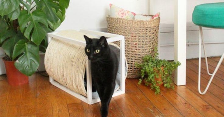 diy fabriquez une cabane pour votre chat avec griffoir int gr. Black Bedroom Furniture Sets. Home Design Ideas