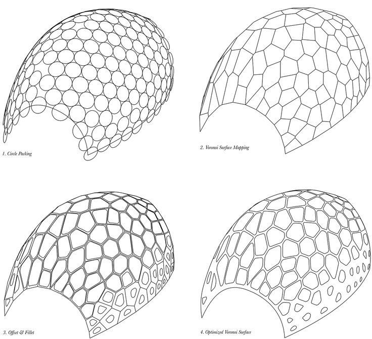 radiolaria shell