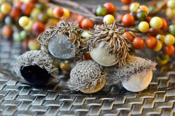 10 Silk Velvet Acorns in Neutral Colors by The Velvet Harvest