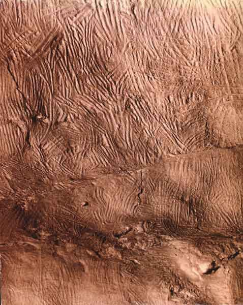 "Koonalda Cave, Nullarbor Plain, South Australia, c. 16,000-27,000 BP / i)flutingwbc  ""Finger markings in soft limestone in Koonalda Cave (R. Edwards)."""