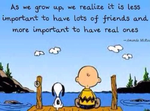 Charlie Brown Quotes About Friendship. QuotesGram