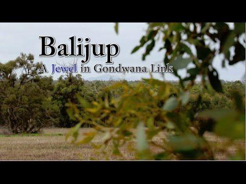 Balijup: A Jewel in Australia's Gondwana Link