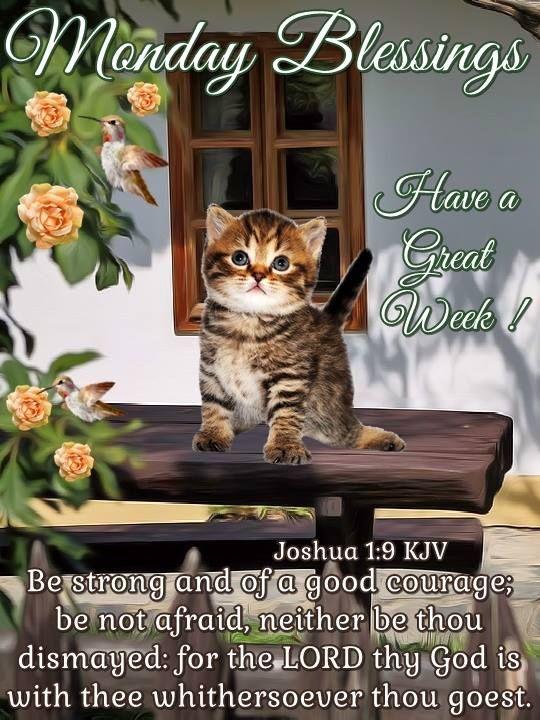 Monday Blessings. Joshua 1:9 KJV !