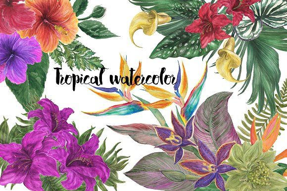 Tropical watercolor by ramika on @creativemarket