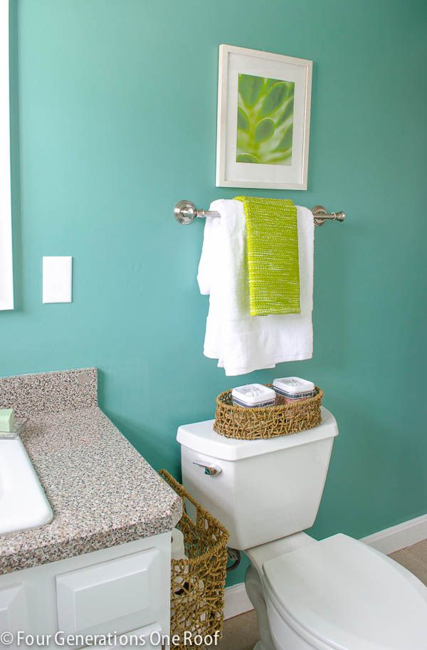 The color Composed, by Sherwin-Williams Emerald Interior (Satin finish) Shower curtain is from homegoods