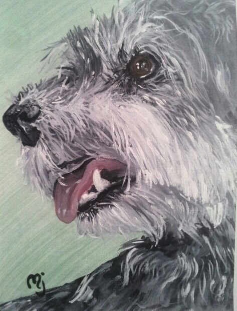 My dog Blackie. Painted in acrylic by me
