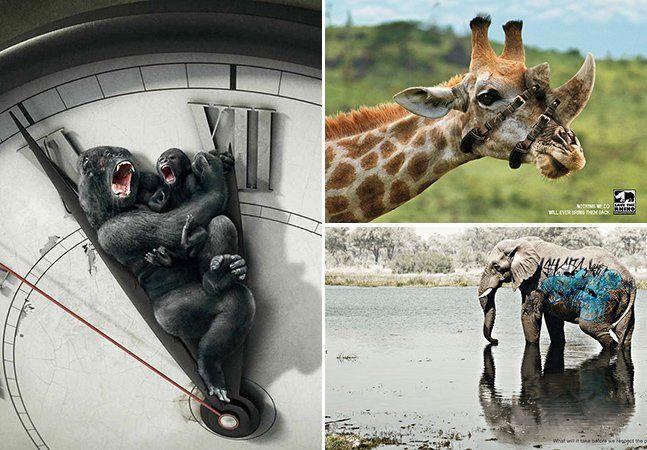 Cada vez mais anúncios relacionados ao meio ambiente e aos animais se destacam na publicidade. Com uma linguagem que aborda questões globais, que não são fáceis de resolver, as propagandas sugerem que mudemos nossos hábitos negativos, refletindo para uma mudança de comportamento positiva. Nestes 30 anúncios, o foco gira em torno de conscientizar a humanidade quanto ao aquecimento global, animais de rua e o cruel abuso de animais para entretenimento, comida, roupas e cosméticos. As imagens…