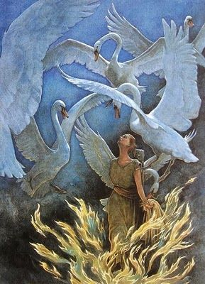'The Six Swans' (1997) by illustrator P.J. Lynch. My favorite fairy tale.