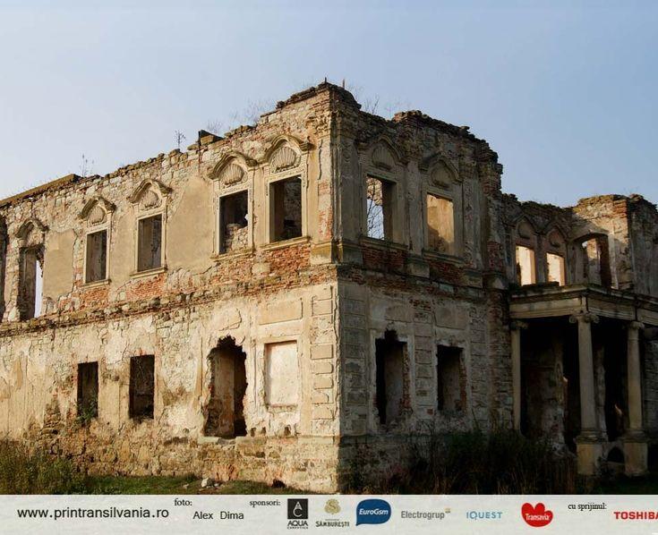 Ruins of Haller Castle in Coplean, Cluj
