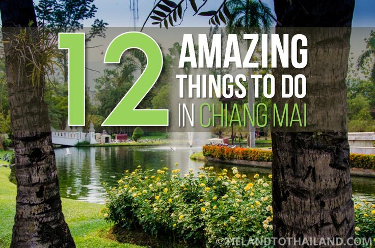 12 Amazing Thing to Do in Chiang Mai. 08  Luxurious Spa Treatment Thailand is famous for its massages. The luxury treatments and spa packages are so affordable here that it's hard to pass up the opportunity to pamper yourself. Treat yourself to a facial or aromatic oil massage at some of Chiang Mai's finest spas. Start with De Chai Spa, Oasis Spa, and Fah Lanna Spa.