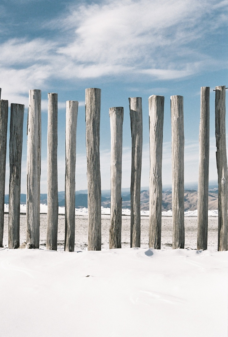 thefocusgallery:    Wind Fence.