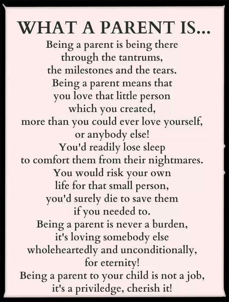 essay about being a mom