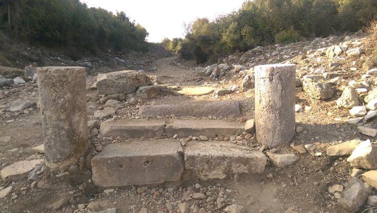 Aspendos'u görenler, burada bir tiyatro var da neden bir şehir yok diye düşünmüyorlar olsa gerek ki, tiyatroya gelip aslında Aspendos Antik Kenti bileti kestirip, hiçbir yönlendirme olmadığı için şehri merak etmeden ve tabii görmeden gidiyorlar. Günde iki elin parmaklarını geçmeyecek kadar az kişinin şehrin geri kalanını merak ettiğini sorduk öğrendik. / Aspendos Theatre, Antalya, Turkey