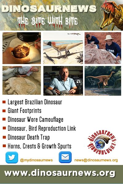 This Week - Largest Brazilian Dinosaur * Giant Footprints * Dinosaur Wore Camouflage * Dinosaur, Bird Reproduction Link * Dinosaur Death Trap * Horns, Crests & Growth Spurts http://www.dinosaurnews.org #dinosaurs #news #dinosaurnews