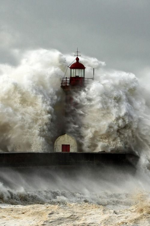 Withstanding the storm