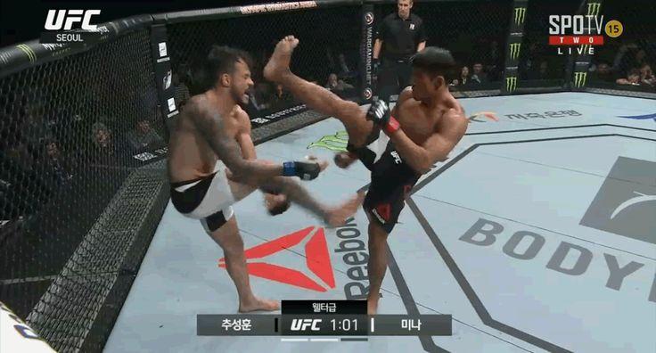 UFC 서울 추성훈 알베르토 미나  판정패 말도안됨 주요장면