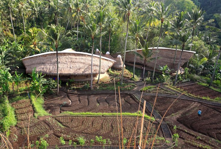 Permaculture Architecture | The gorgeous campus and innovative bamboo…