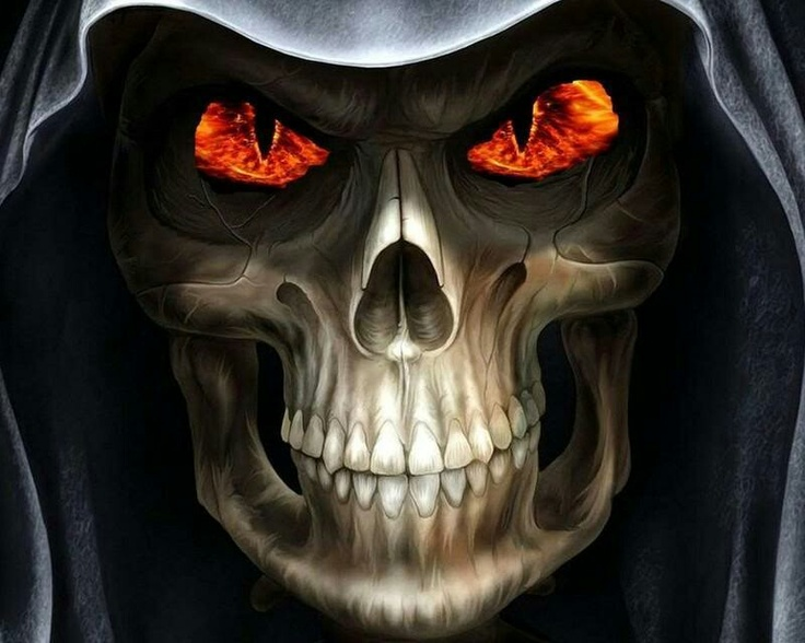 49 best fire art images on pinterest fire art skull and skulls skull fire voltagebd Images