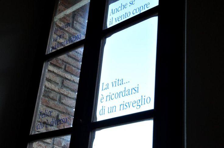 """""""La vita è..."""" #alTrasimeno/Dayafter @davidelico @egyzia @verdecardamomo @apeindiana @nicocarmigna @azael @Social_Ita foto di @marcostancati"""