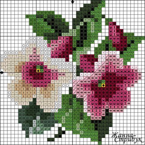 422125-7de56-101981962--u5c3d7.jpg 840×840 pixeles