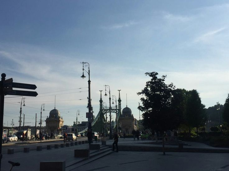 Liberty Bridge, Budapest, HUN