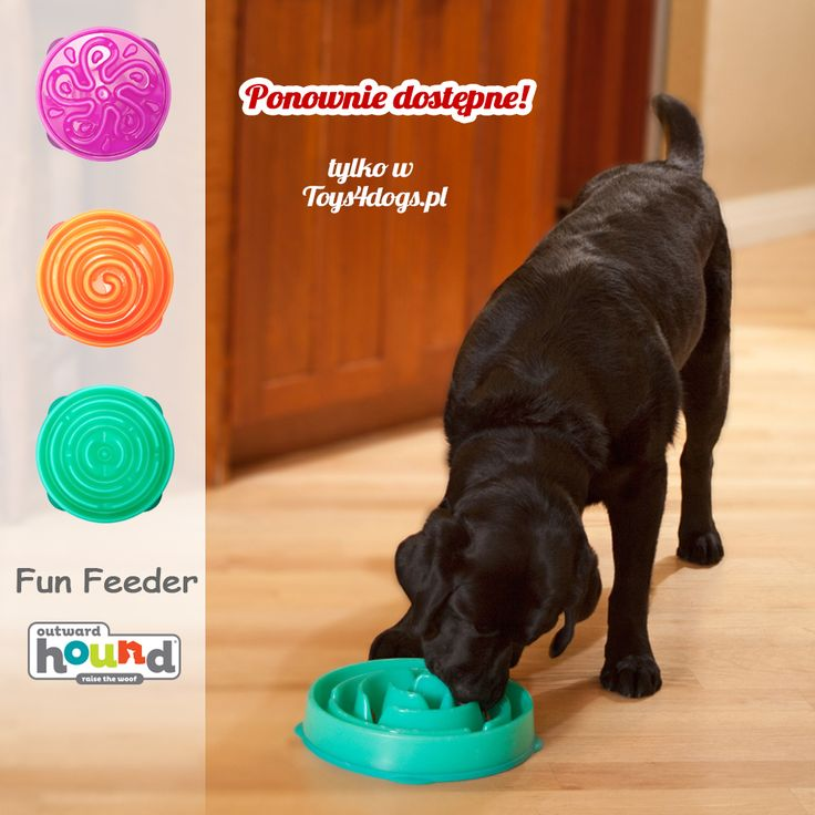 Podano do stołu! Miseczki spowalniające jedzenie. Dostępne w 2 rozmiarach i 3 kolorach. Takie miski tylko w Toys4dogs.pl #outwardhound #toys4dogs #miskadlapsa #zabawkidlapsa