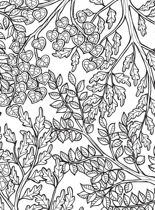 tree with leaves coloring 1361 best coloring outside the lines images on pinterest