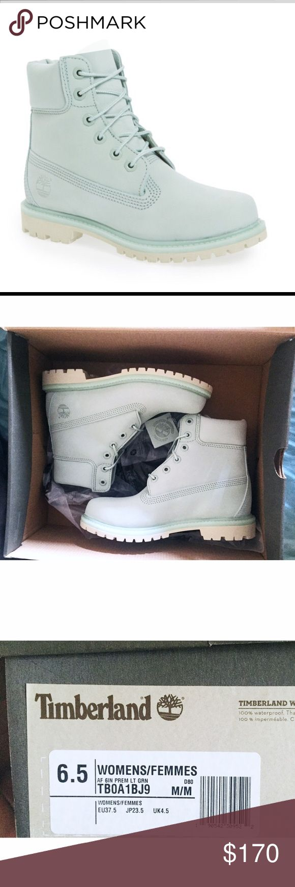 """NWT Timberland 6"""" Limited Edition Nubuck Boots These are 100% authentic light green nubuck 6"""" leather women's boots. They are brand new in box and are in pristine condition! Price is firm because it is the cheapest online & I love these boots, and don't really want to sell them but have doctors bills. Women's size 6.5. Timberland Shoes"""