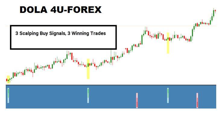 Forex trading vs affiliate marketing