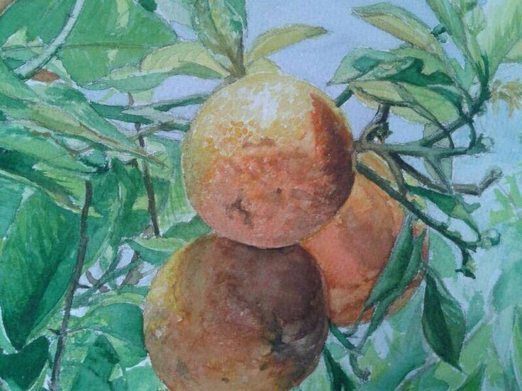 Pintura. Naranjo -detalle-. Óleo sobre lienzo.