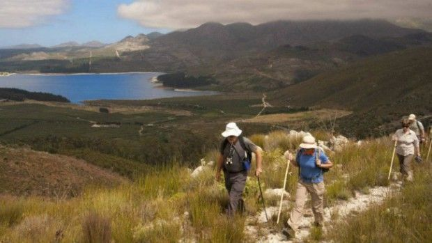 Hiking Elgin Valley - The Elgin Valley, within the Overberg region, offers a variety of hiking options. Where half-day and one-day hikes are accessible treats for the whole family, a four-day slackpacking hike on the 60-kilometre Green Mountain Trail is a delightful indulgence. On this slackpacking route hikers enjoy walking 11 to 18km each day with accommodation in four-star country guesthouses and wholesome meals each day.