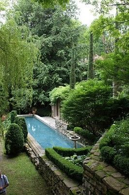 Garden and swimming pool of decorator and landscape designer Michael Trapp. Photograph by Karl Gercens.