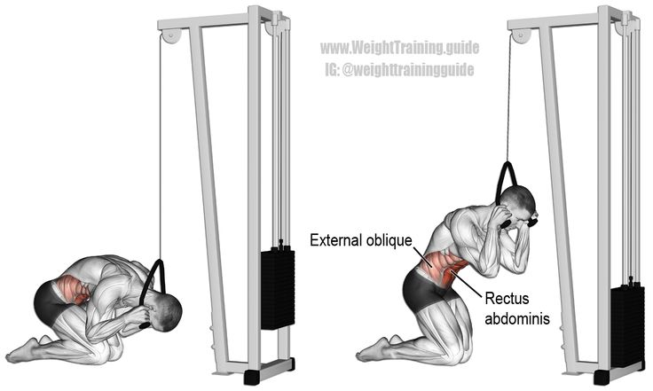 Kneeling cable crunch. An isolation pull exercise. Main muscles worked: Rectus Abdominis and Internal and External Obliques. See website for instructions on how to properly perform this exercise, which most people get wrong.