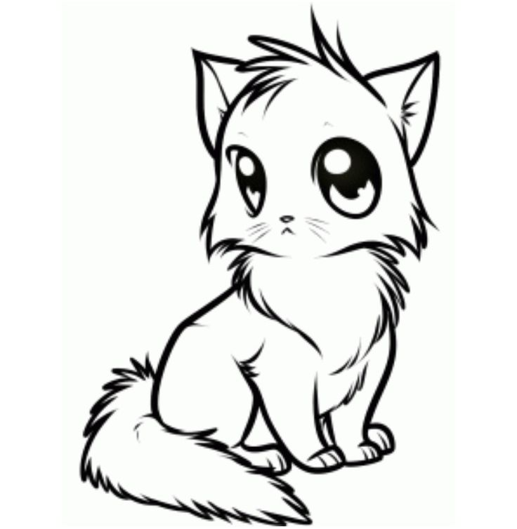 30 best how to draw warrior cats