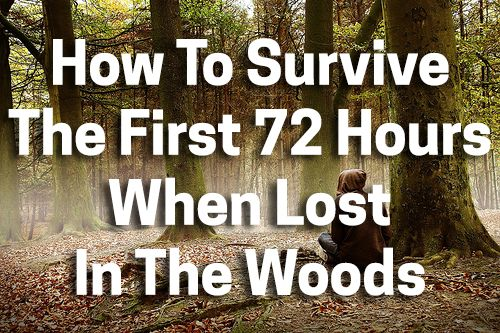 About 2,000 people get lost in the woods every year. Do you know how to survive?