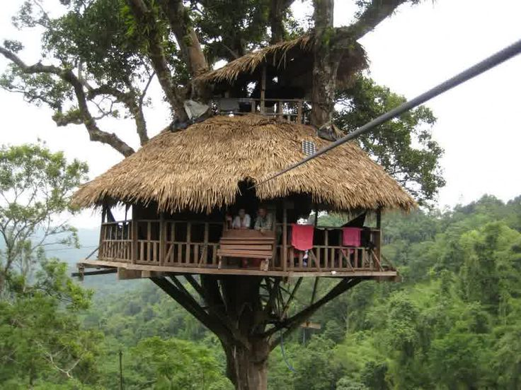 Simple Tree Houses