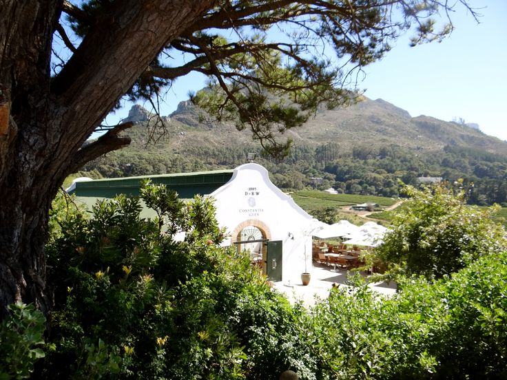 Perched high up on the Constantiaberg mountains, you'll find the boutique wine estate, Constantia Glen. Famed for its bespoke wines and stunning views, it is truly one of the gems of the Constantia Valley.
