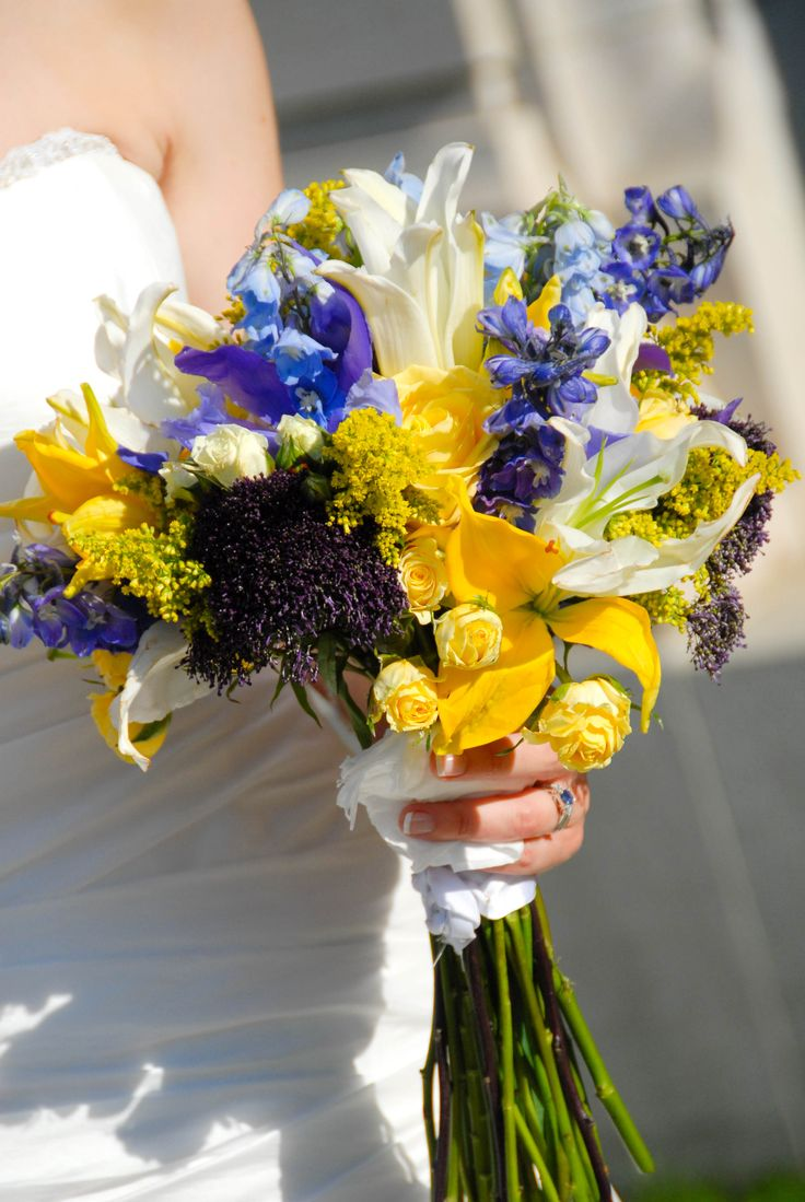 Bold Yellow and Blue