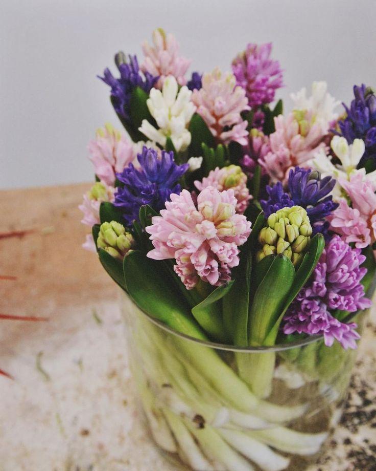 Los primeros Jacintos de temporada ya han llegado, y qué bien huelen! #margaritamiamor  #flores #shop #flowers #floristeria #madrid #love #nice #beauty #place #bestoftheday #amazing #smile