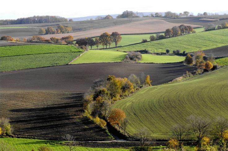 back-to-basic-landschap.jpg 800×531 pixels