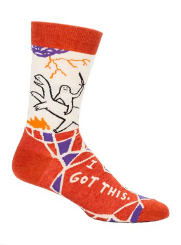 i got these awesome mens novelty socks by blue q