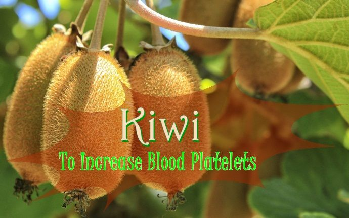 Platelets Natural Remedies