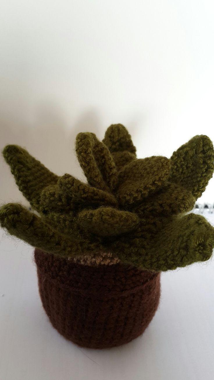 kaktüs#cactus#cacti#crochet#crochetcactus#yarn#yün#hobim#myhobby#elişi#örgü#istanbul#elyapımı