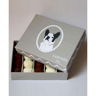 Ladurée French Bulldog Truffle Box.