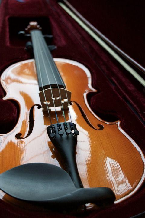 Violino, Veludo, Caso, String, Arco, Madeira