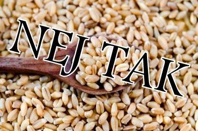 Paleolivet: Paleo - hvorfor spiser vi egentlig ikke korn?