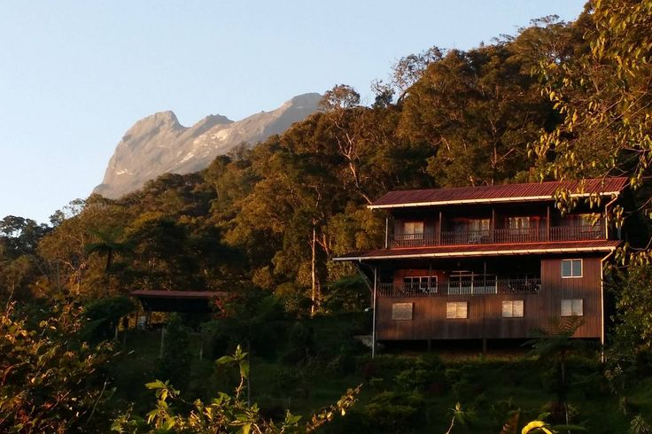 stay at a.s.l 1588m montane rainforest Eco Mountain Lodge, Mount Kinabalu at the back of the Lodge