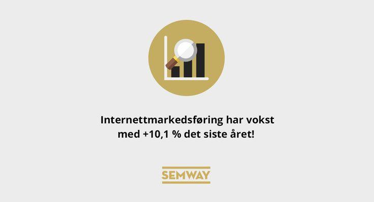 Internettmarkedsføring 2016 #illustration #funfact #faktafredag #semway