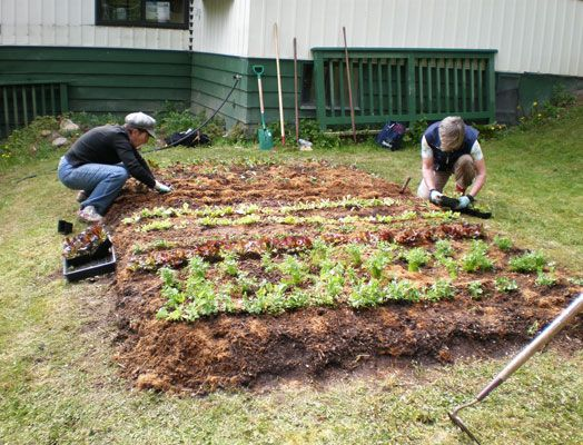 17 Best images about How to make a growbed – Steps to Planting a Garden