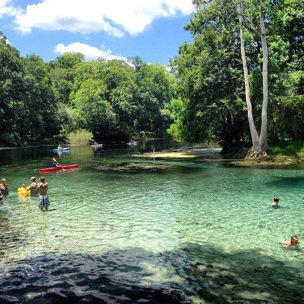 Cheap Flights To The Top Destinations In Florida Tampa: Here Are 10 MORE Florida Swimming Holes That Will Make